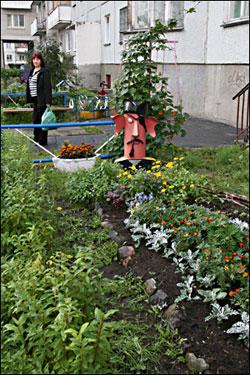 Цветы за цветники вечерний северодвинск от 5 ноября 2009 г..